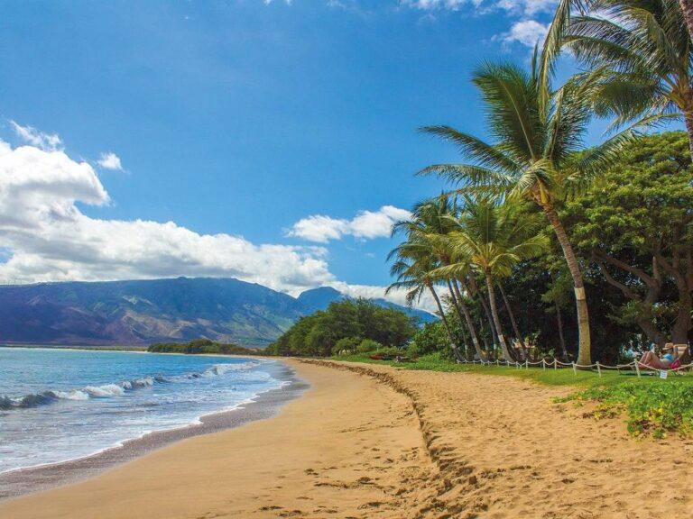 Jaká piva si můžete dát během dovolené na Havaji?