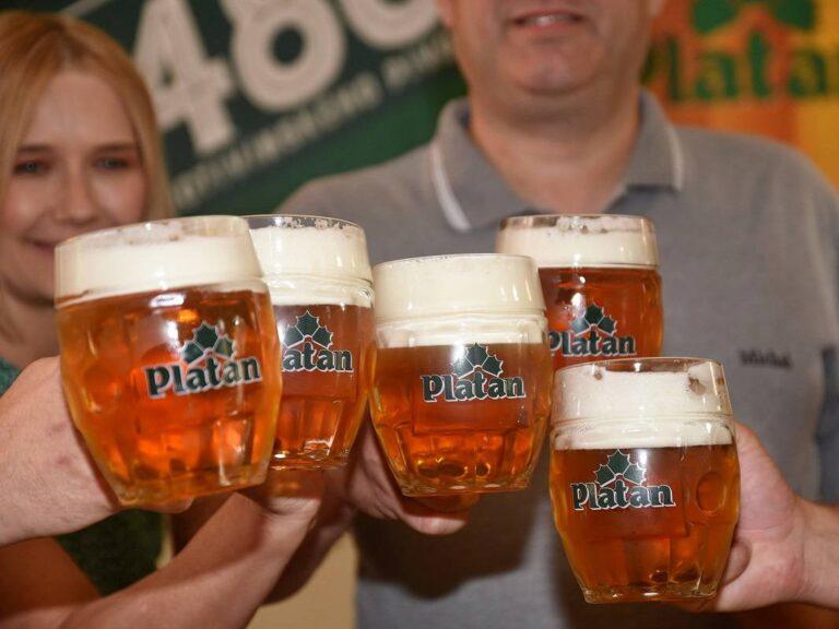 Pivovar Platan slaví 480 let. Pro milovníky piva navařili sládci nový výroční ležák