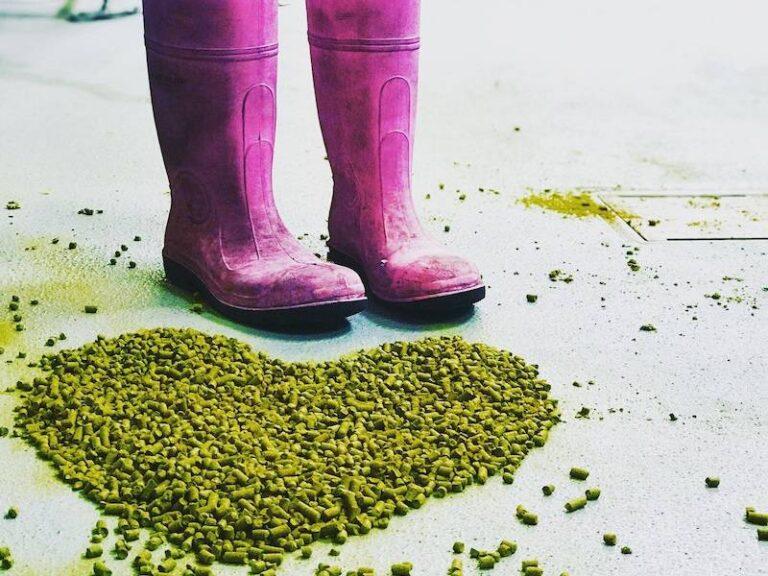 Minipivovar Proud uvaří speciální várku piva Hazy IPA